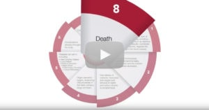 The Spiral From Early Warning Signs to Vascular Disease and Death