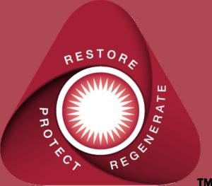 Restore-Regenerate-Protect-Triangle-Image-b